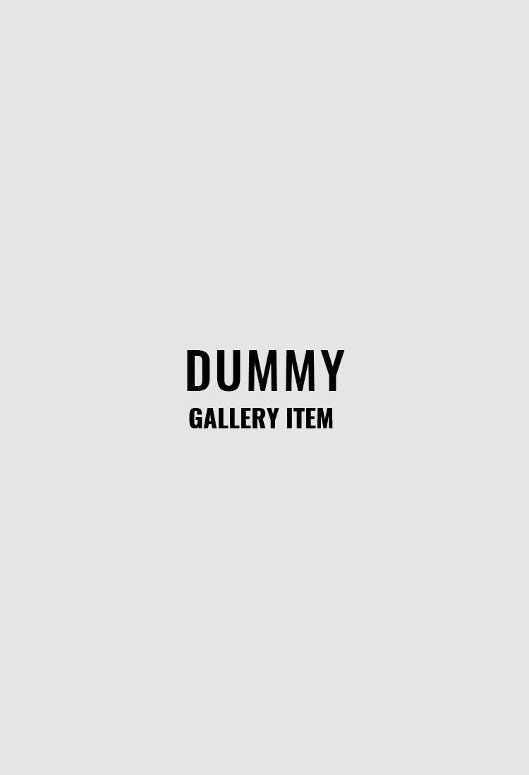 dummy-gallery
